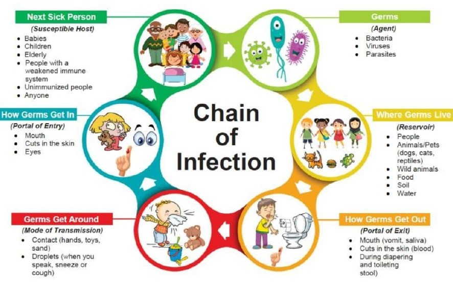 chain of infection image